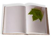 20091129202403-libro-mas-hoja.jpg